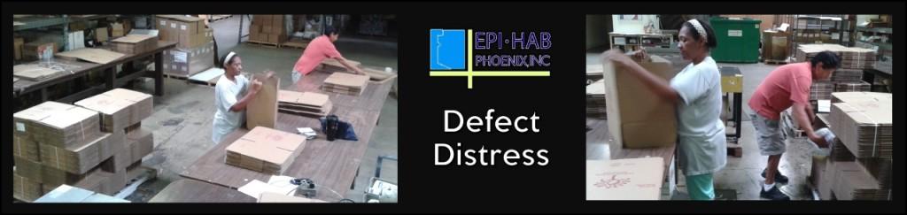 thumbnail_Defect Distress